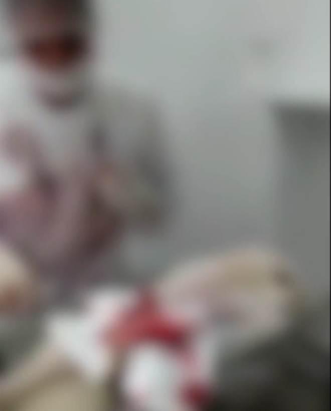Canil clandestino é suspeito de operar Spitz Alemão sem anestesia em Vila Velha, ES