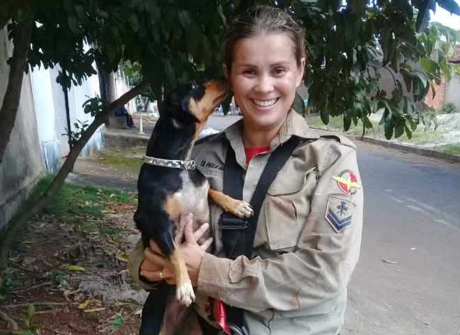 Bombeiros de Goiânia resgatam cadela que caiu em bueiro no Setor Santo Hilário em Goiânia, GO