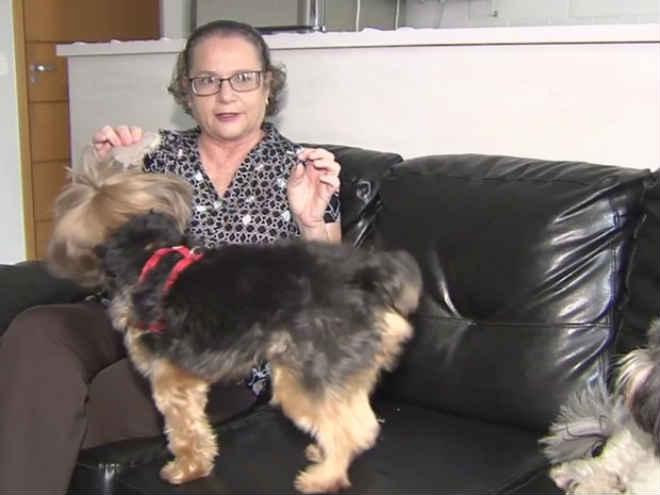 Projeto quer liberar visitas de animais de estimação em hospitais de Goiás