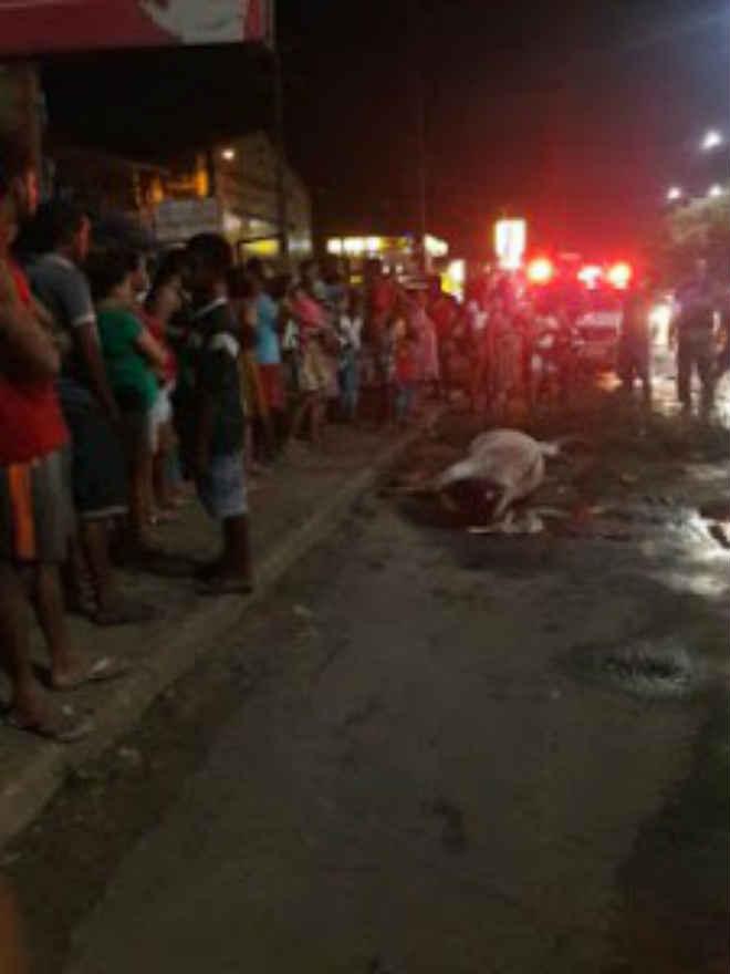Moradores de São Luís (MA) fecham Avenida dos Portugueses em protesto contra morte de animal