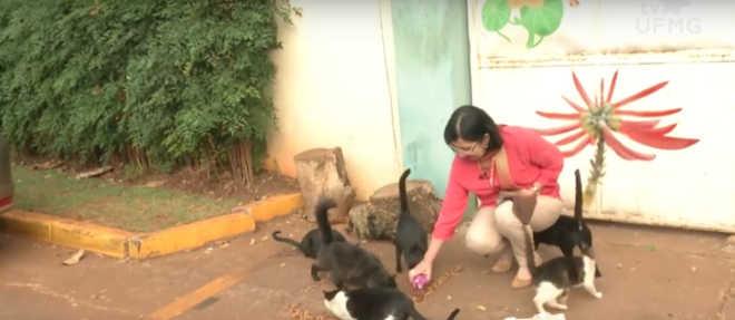 Professor doutor da UFMG é denunciado por colegas por maus-tratos a animais