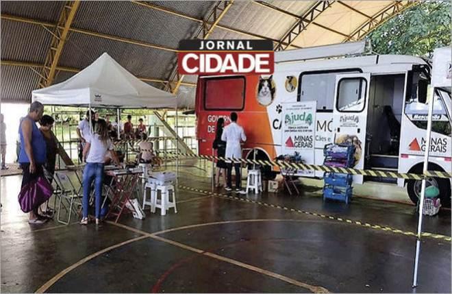 Primeiro grupo de animais é selecionado para castração em Santo Antônio do Monte, MG