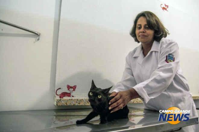 Com 500 animais na fila, castração volta a ser realizada gratuitamente em Corumbá, MS