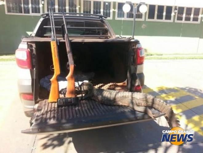 Caçadores de jacaré são presos com animal abatido, armas e munições em Ivinhema, MS