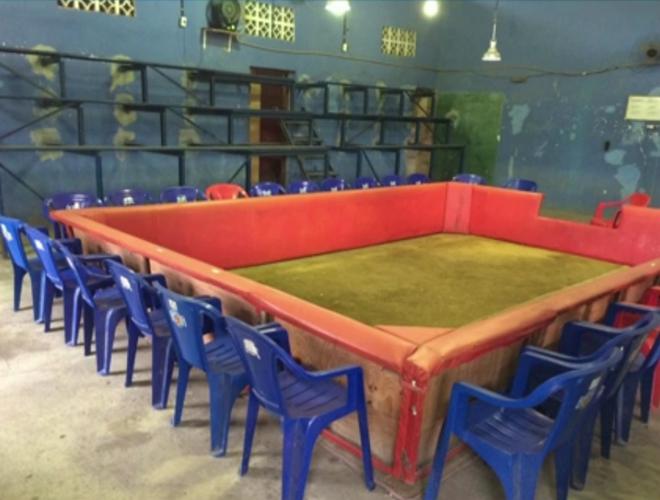 Rinha de galo é descoberta em depósito na Baixada, RJ