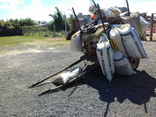 Carroça vazia leva o cavalo maltratado em Guajuviras, RS