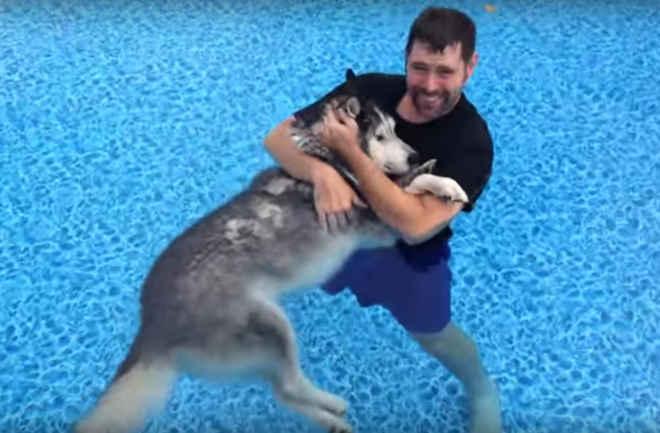 Homem carinhoso usa terapia na água para ajudar a aliviar a dor na pata de cão idoso, e funciona!