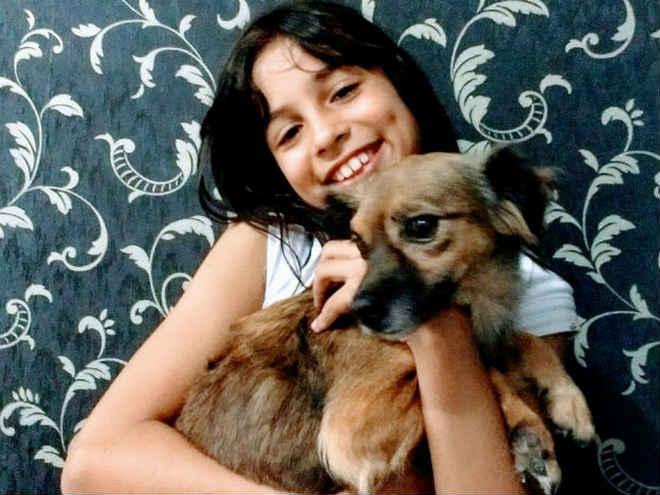 Após campanha, dona acha cadela perdida por pet shop em Jacareí, SP