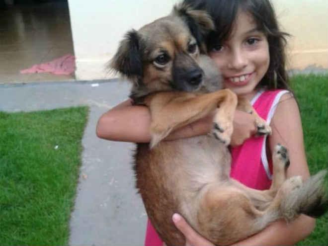 Pet shop perde cadela deixada para banho em Jacareí, SP