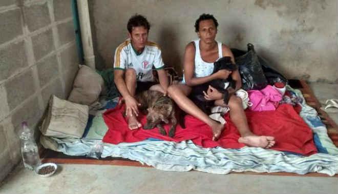 Casal que andou 80 km para não perder cachorros precisa de ajuda em Votuporanga, SP