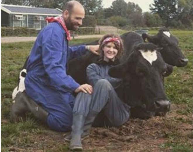 Cafuné em vacas resgatadas vira técnica para diminuir estresse na Suíça