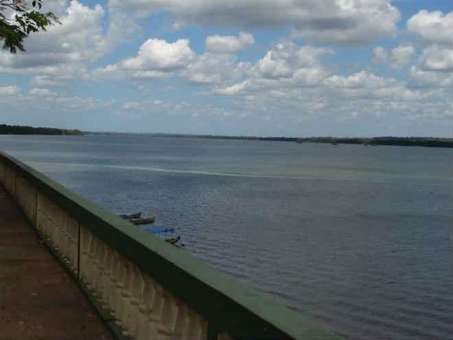Mais de 20 bois morrem após barco de vereador afundar no rio Araguaia em Araguatins, TO