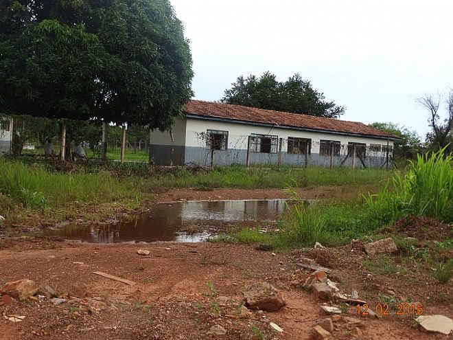 MP investiga condições precárias e possíveis maus-tratos a animais no CCZ de Várzea Grande, MT
