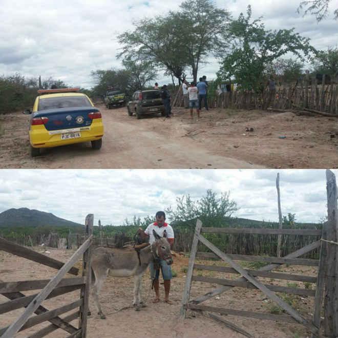 Secretaria de Meio Ambiente auxilia resgate de jumento que estava sofrendo maus-tratos em Juazeiro, BA