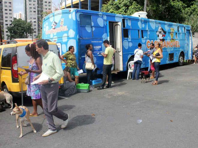 Castramóvel realiza esterilização de cães e gatos até 28 de abril no Paripe, em Salvador, BA