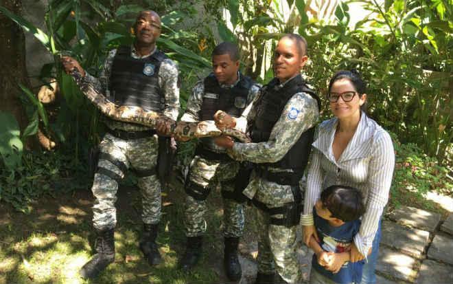 Jiboia de 2,5 metros é resgatada em quintal de casa em Patamares, Salvador, BA