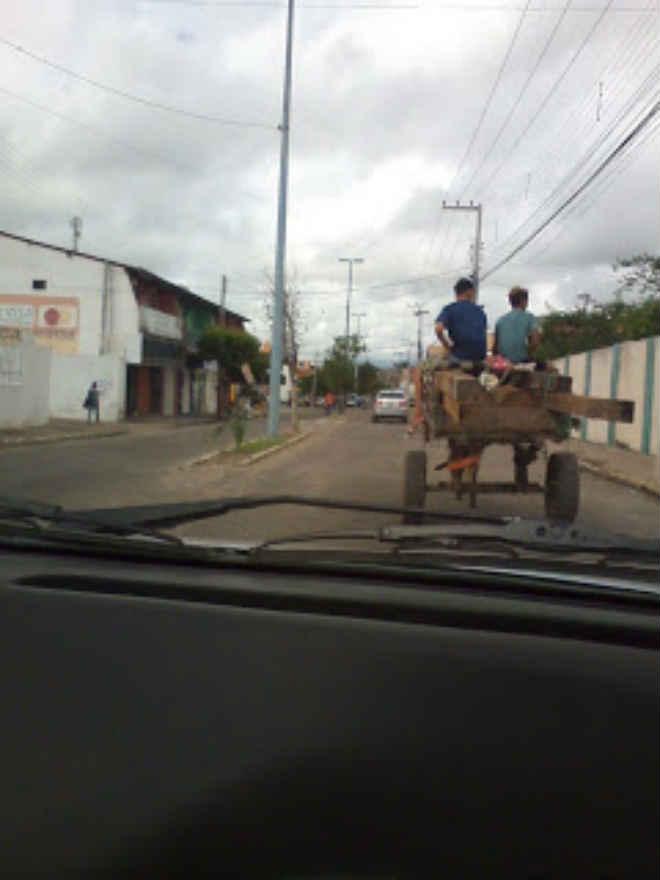 Casal flagra maus-tratos contra animal em Quixeramobim, CE