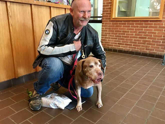 Em um abrigo, cadela de 18 anos encontra o tutor perfeito