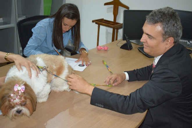 Animais de estimação agora podem ser registrados em cartório de Goiânia, GO