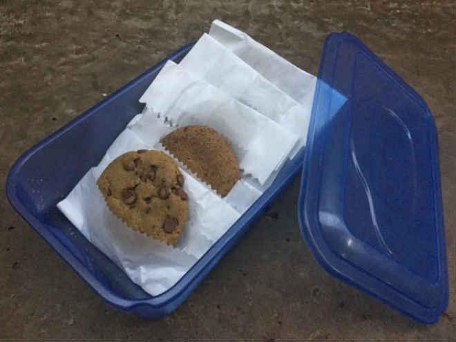 Pela UFMS, venda de cookies veganos ajudam Bianca no resgate de animais de rua