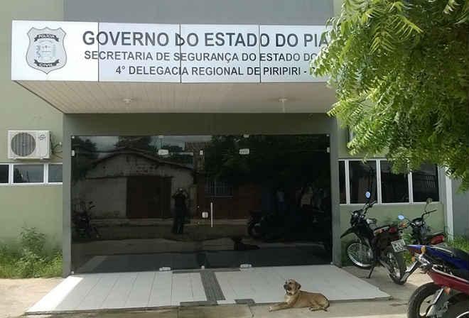 Cão morre após semanas diante de delegacia esperando tutor preso em Piripiri, PI