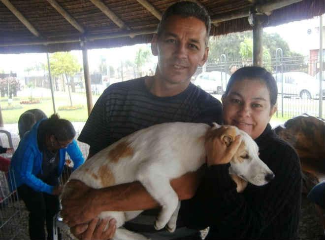 Bosque Municipal recebe mais uma Feira de Adoção de Animais em Pinhais, PR
