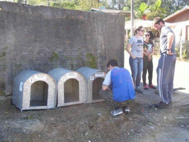 Nem as casinhas de cachorro escapam dos vândalos em Nova Veneza, SC