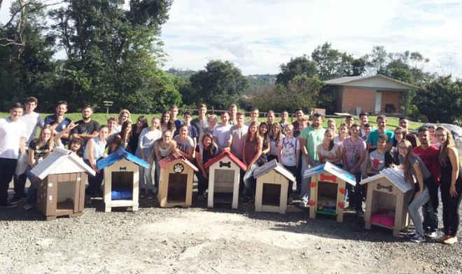 Estudantes projetam e executam casinhas de cachorro que serão doadas para ONG dos animais de Joaçaba, SC