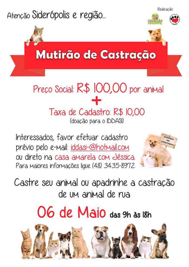 Instituto de Defesa animal promove mutirão de castração com preço social em Siderópolis, SC
