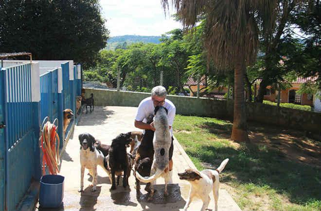 Prefeitura de Campo Limpo Paulista (SP) investe R$ 156 mil para resgate de animais sob maus tratos
