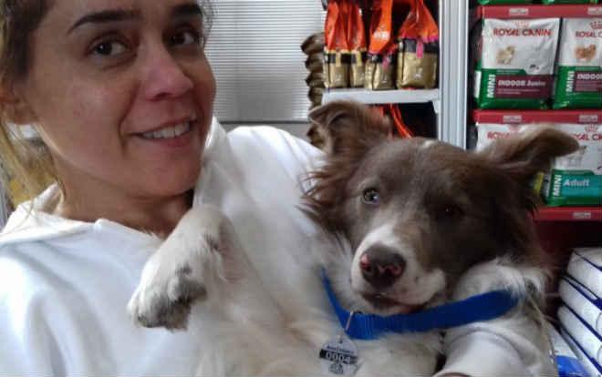 Campos do Jordão (SP) teve maior campanha de castração de cães em massa já realizada no município