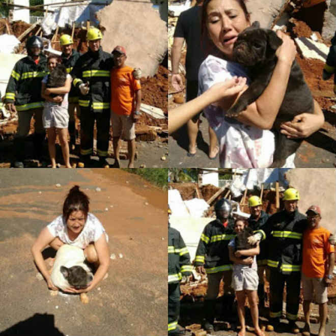 Bombeiros resgatam cachorros em escombros após desmoronamento de canil em Pirapozinho, SP