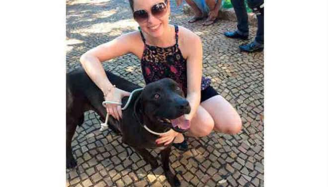 Após batalha na Justiça, cão Atleta se livra da eutanásia em Santa Fé do Sul, SP