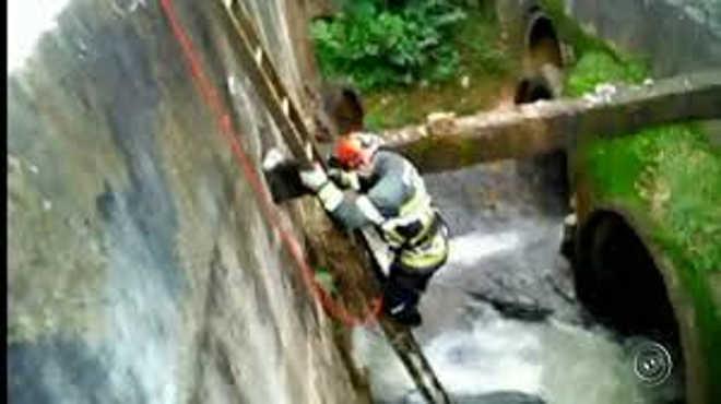 Resgate de cão preso em tubulação mobiliza equipes em Várzea Paulista, SP