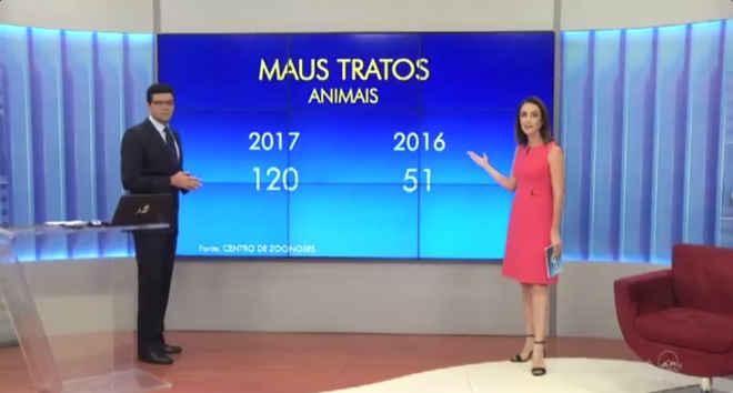 Polícia prendeu 97 pessoas por maus-tratos contra animais no Ceará; número é 10% maior que em 2016