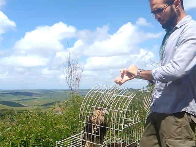 IMA e Ibama fazem soltura de animais que foram resgatados ou apreendidos em Alagoas