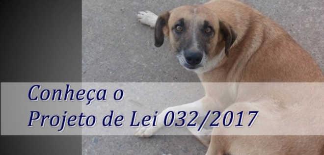 Saiba mais sobre PL que prevê o Controle Ético Populacional de cães e gatos em Itamarandiba, MG