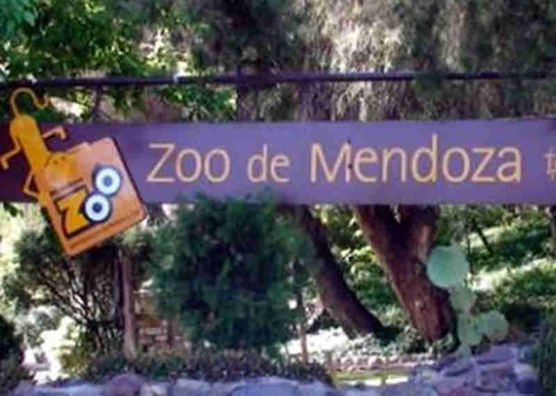 Diretora do antigo zoológico de Mendoza, na Argentina, é denunciada por maus-tratos a animais