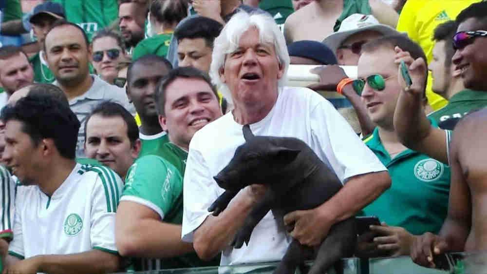 """Animais, futebol e ética: a """"bola fora"""" das torcidas"""