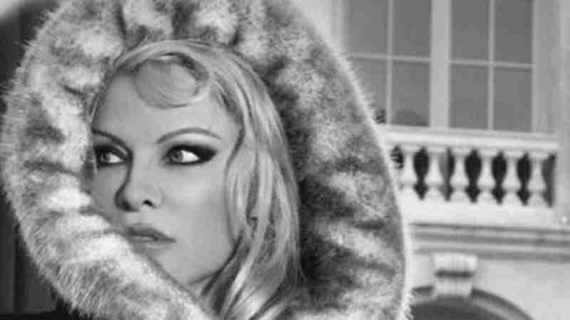 'Animais foram eletrocutados' diz Pamela Anderson sobre casaco de Naomi Campbell