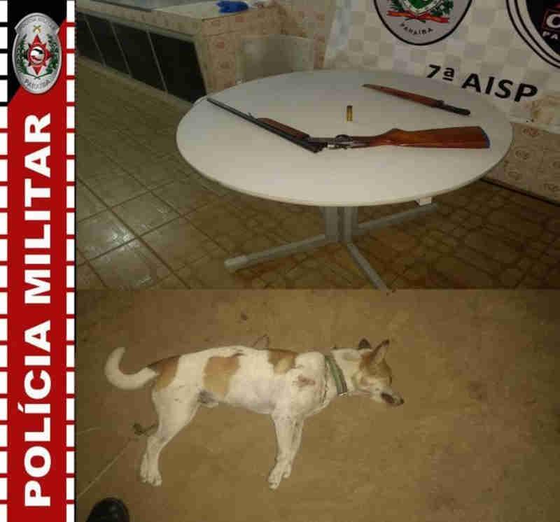 Homem ameaça desafeto e acaba matando cachorro com tiro de espingarda na Paraíba