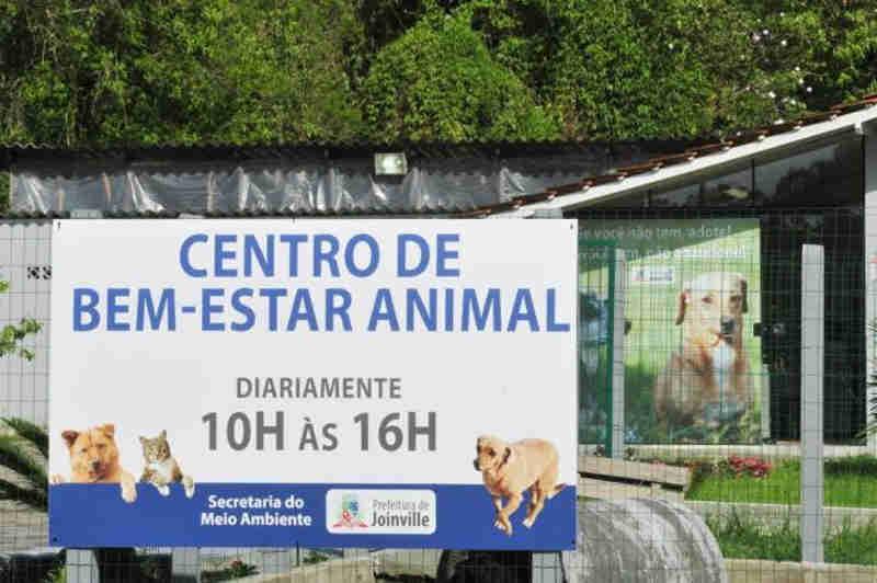 Local não receberá novos animais e nem vai liberar os bichos enquanto estiver interditado (Foto: Salmo Duarte / A Notícia)