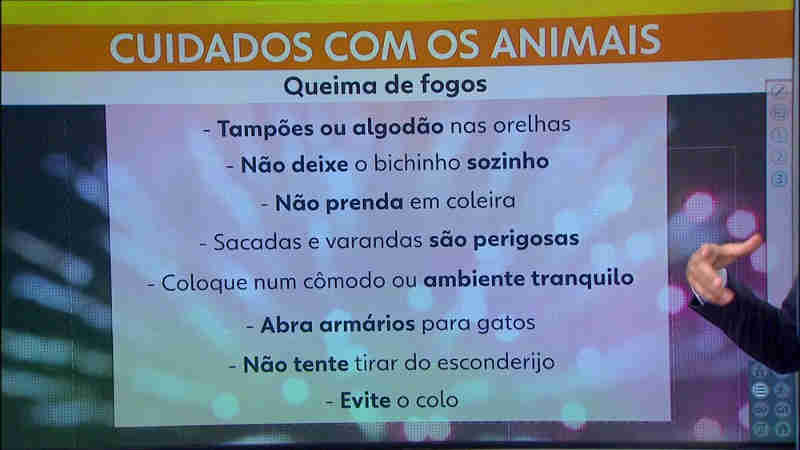 Cuidados com os animais de estimação na hora dos fogos (Foto: Reprodução/TV Globo)