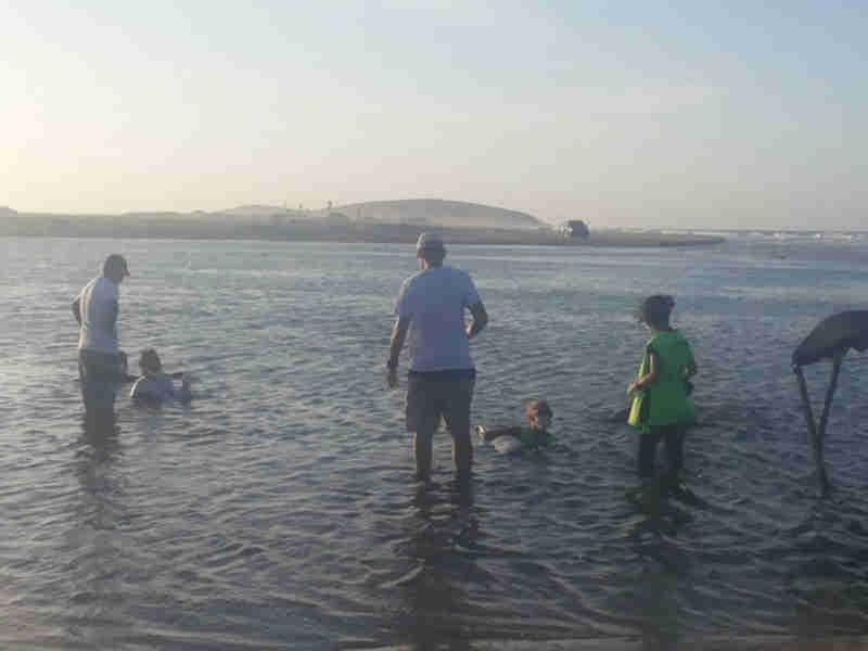Golfinhos encalhados no litoral cearense recebem cuidados de veterinários e biólogos (Foto: Aquasis / Divulgação)
