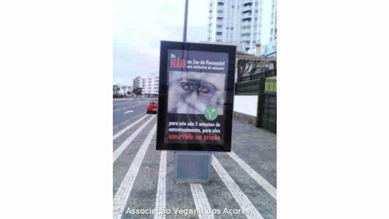 Portugal: Associação reivindica fecho do 'zoo' da Povoação com mupi na Avenida