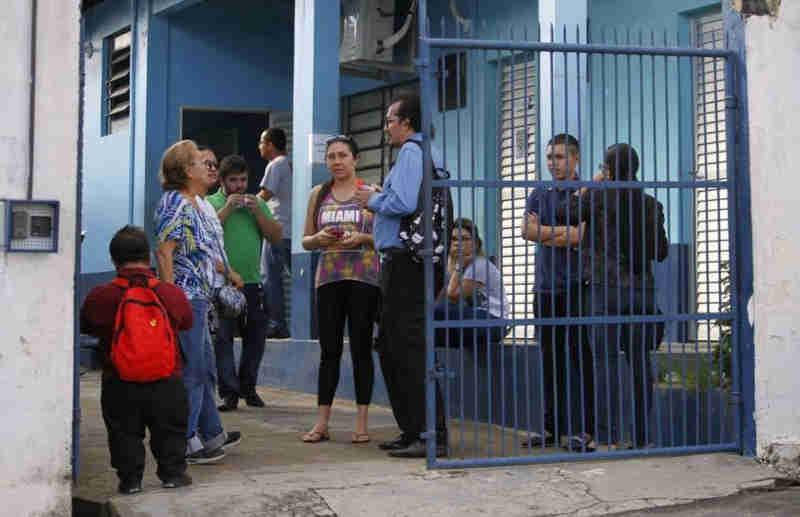 Protetores de animais acusam CCZ de capturar cães saudáveis em rua de Manaus, AM