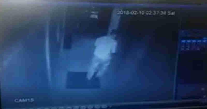 Vídeo mostra homem agredindo cadela na Asa Norte, em Brasília, DF