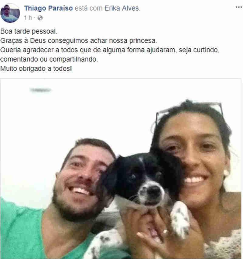 Cadela levada em assalto é encontrada abandonada em rodovia na Serra, ES