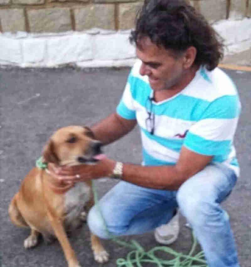 Taxista é multado quando socorria animal no centro de Patos, PB
