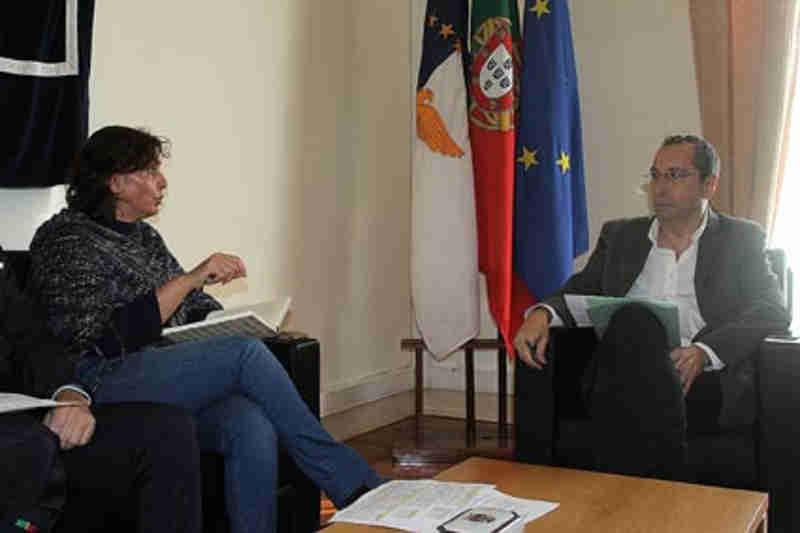 Portugal: Governo dos Açores cria novo regime de apoio às associações de proteção de animais